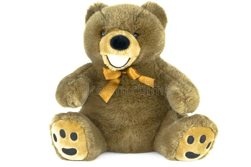 Classic brown teddy bear isolated on white.  stock image