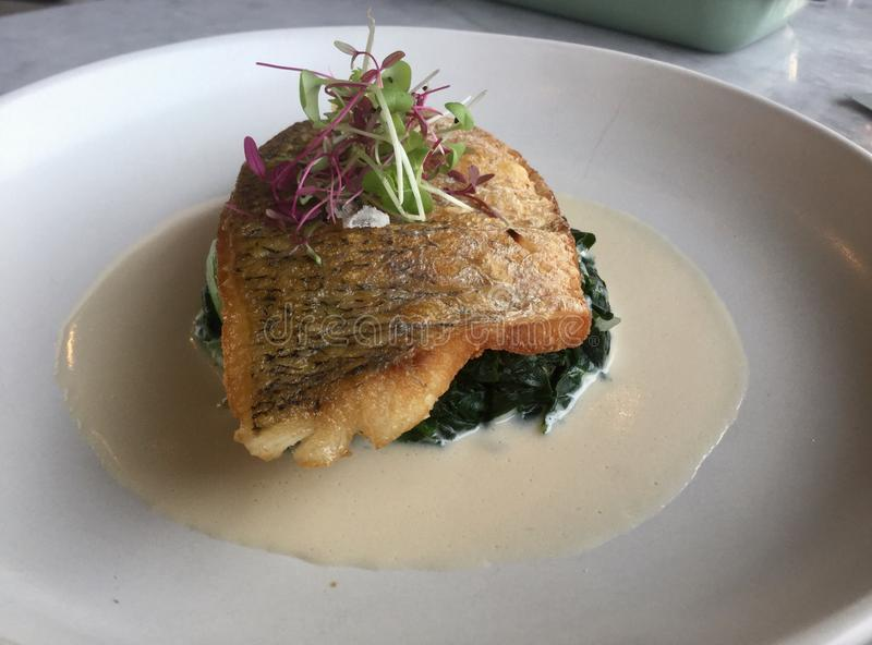 Classic dish. Fish on spinach . Sea bass in wine sauce. Sea bass on Spinach with wine sauce royalty free stock photo