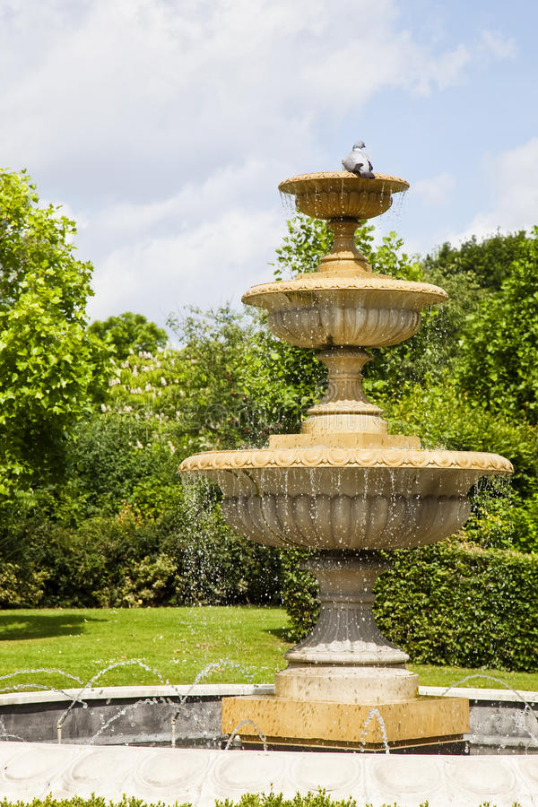 Classic fountain. With a pingeon in a green park stock photo