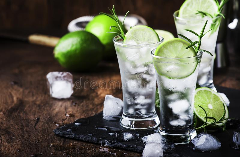 Classic gin tonic cocktail with lime, ice and rosemary. Vintage bar, evening atmosphere, bar tools. Classic gin tonic cocktail with lime, ice and rosemary stock image