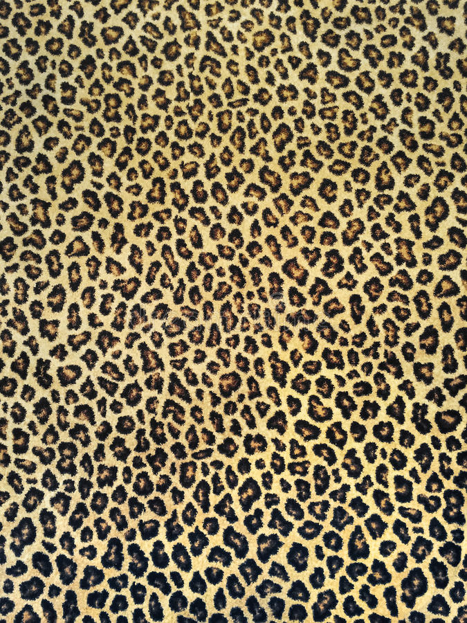 Classic leopard fabric stock images
