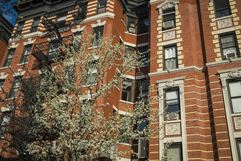 Download Classic Old Apartment Building, New York City Stock Photo - Image: 34965356