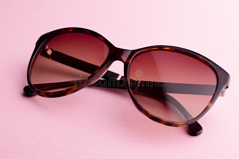 Classic oval oversized brown tortoise sunglasses closeup on pink background royalty free stock photos