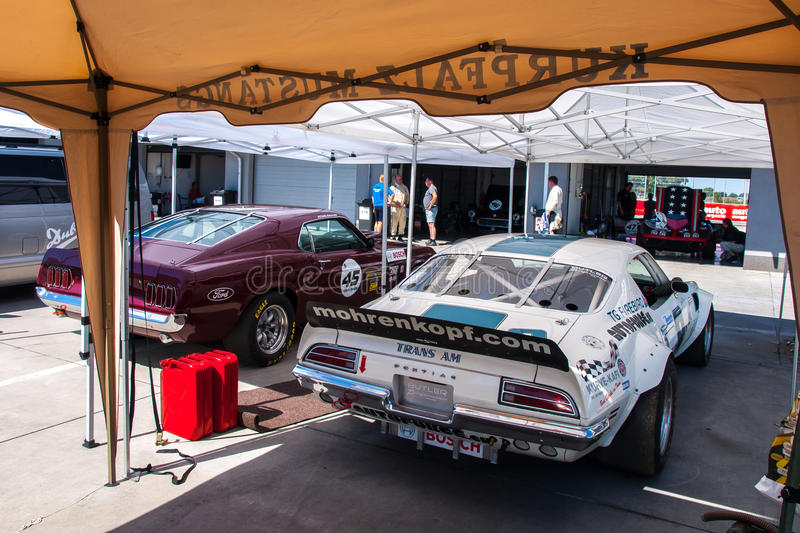 Classic Pontiac Firebird & Ford Mustang race cars stock image