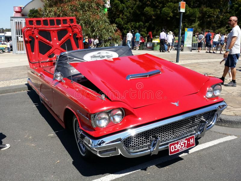 Classic red car. At Geelong revival festival royalty free stock images