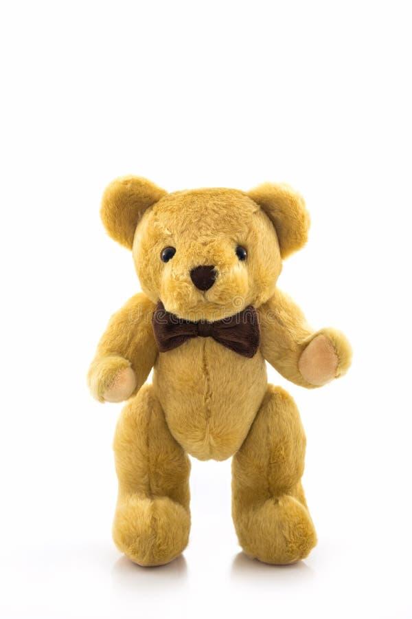 Classic teddy bear. stock photos