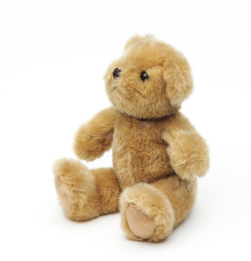 Classic teddybear isolated on white background royalty free stock image
