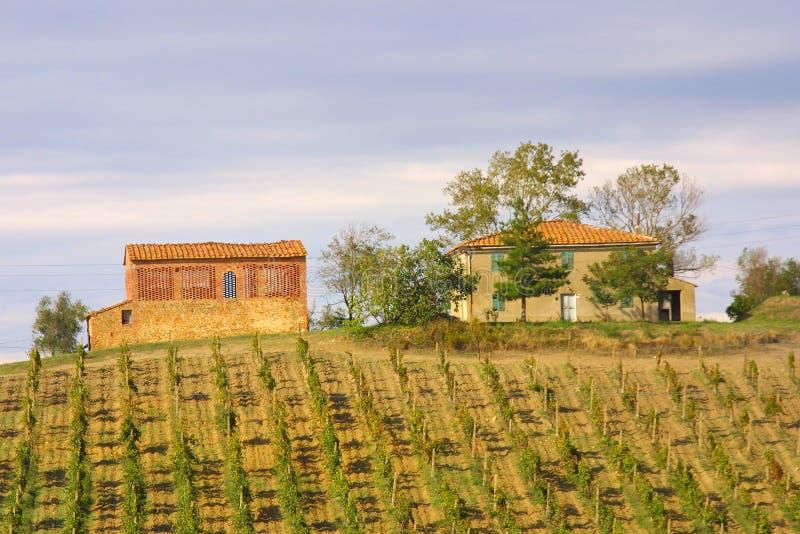 Download Classic Tuscan Farmhouse stock photo. Image of green, italia - 1996870