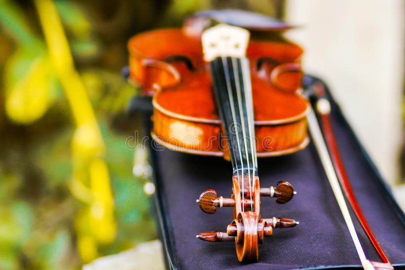 Classic wood fiddle in a weding stock photography