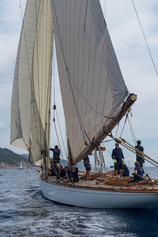 Classic yacht regatta royalty free stock photos