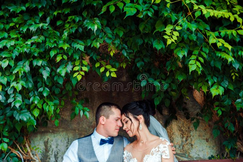 The guy and the girl are smiling at each other. Classic young wedding couple. royalty free stock photo