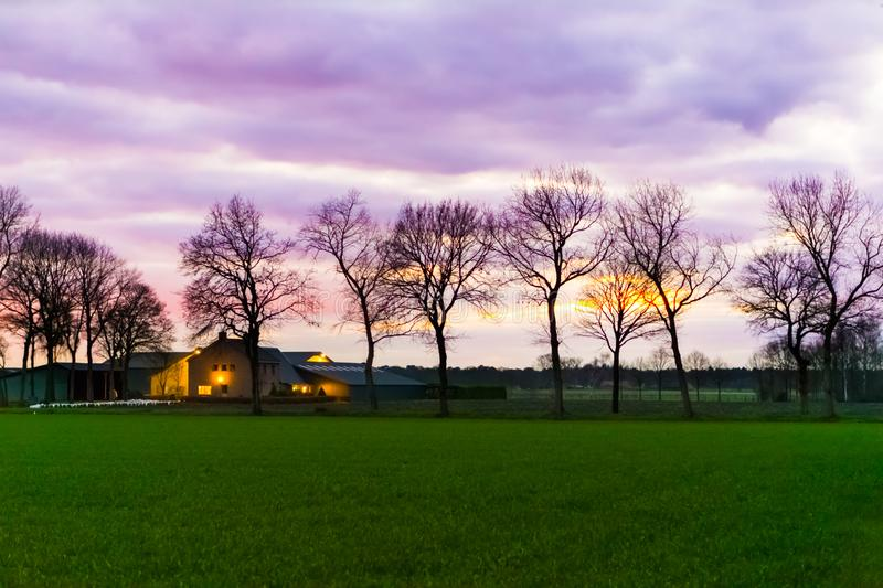 Classical dutch landscape of a grass field with trees and a farmer house, nacreous pink and purple clouds coloring the sky, rare royalty free stock image