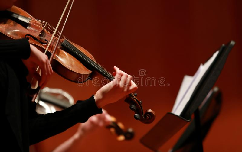 Classical music. Violinists in concert. Stringed, violinist. Closeup of musician playing the violin during a symphony stock images