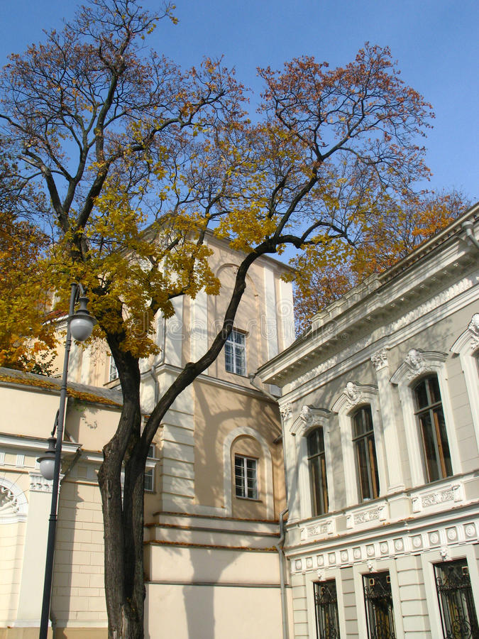 Classicism et automne photos stock
