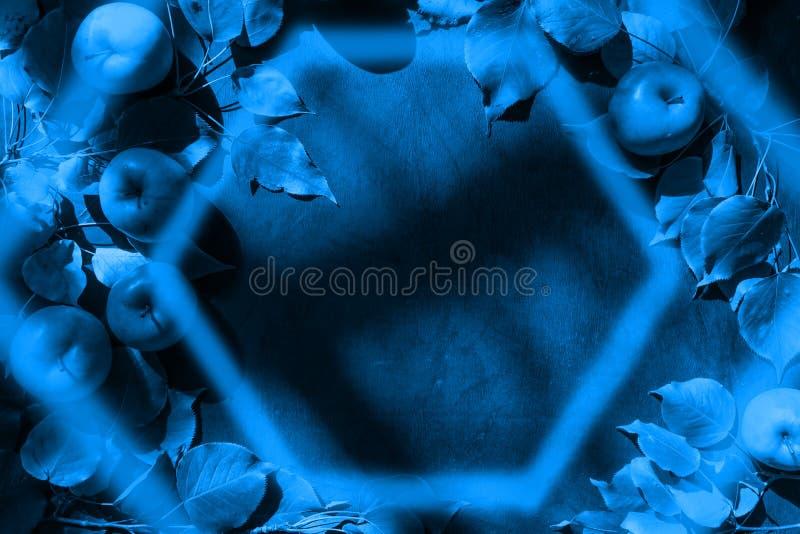 Classico sfondo blu 2020 con mele e foglie, telaio esagono e ombre sopra Vista dall'alto, copia spazio immagini stock