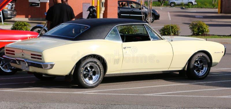 Classique Pontiac Firebird 1968 photographie stock