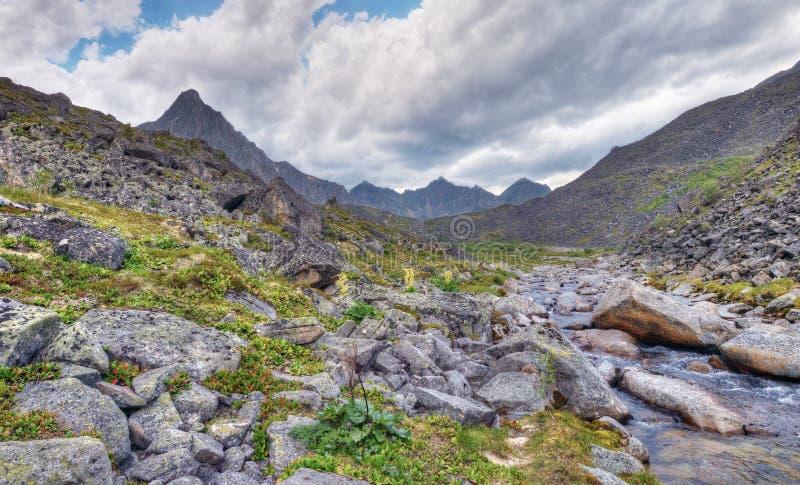 Clastic vaggar nära bergfloden royaltyfria foton