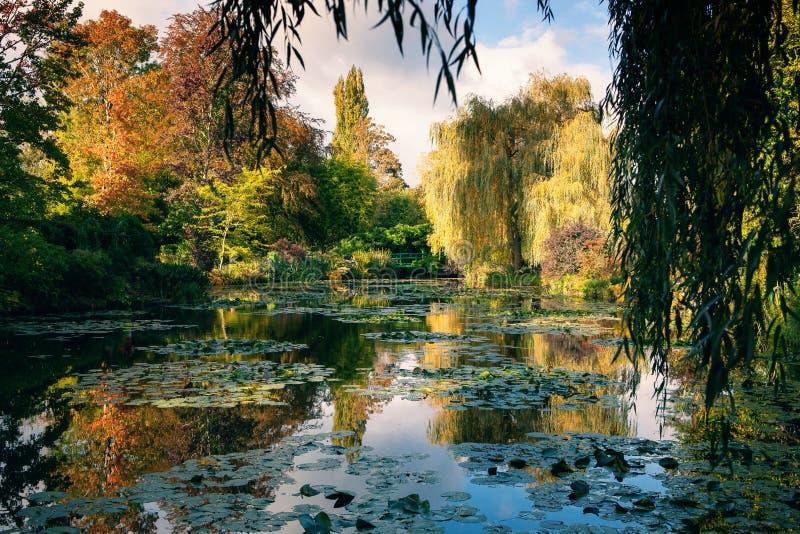 Claude Monet trädgården i höst, näckrors i sjön på en solig dag arkivfoton