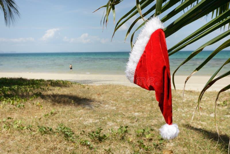 Download Claus hatt tropiska santa fotografering för bildbyråer. Bild av semestrar - 19792547