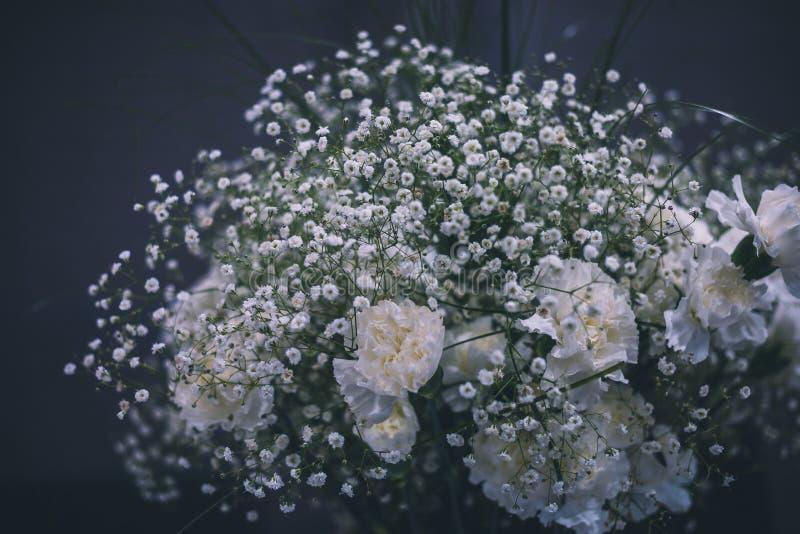 Claveles blancos y ramo blanco del paniculata foto de archivo libre de regalías