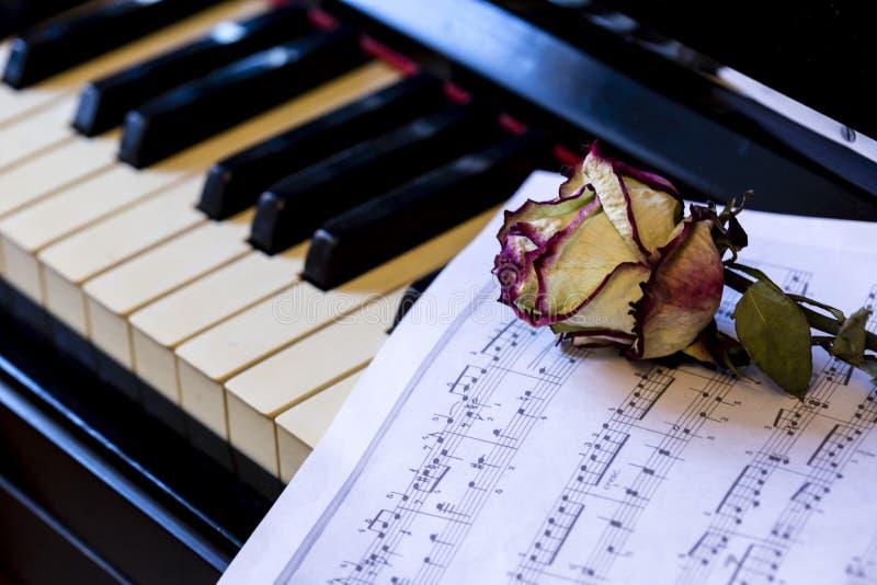 Claves de piano con rosa seca. La idea del concepto de amor a la música, para el compositor, inspiración musical imagenes de archivo