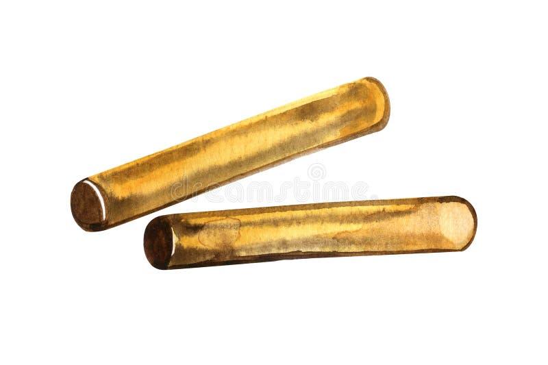 Claves - instrumento de percussão de madeira da mão - ilustração isolada da aquarela no fundo branco fotografia de stock royalty free