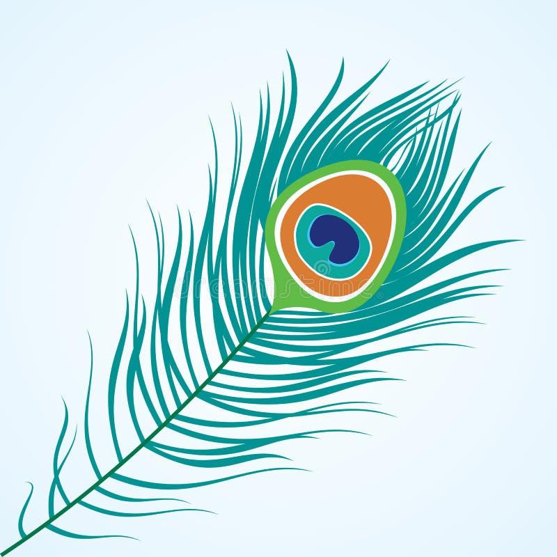 Clavette de paon illustration libre de droits