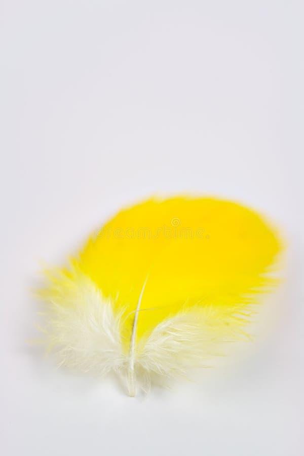 Clavette jaune photo stock