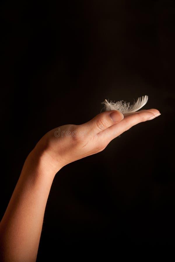 Clavette sur la main d'une femme photo stock