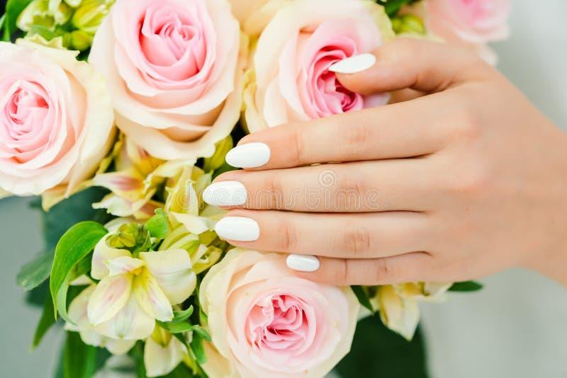 Clavos de la mujer joven con la manicura blanca en una flor color de rosa foto de archivo libre de regalías