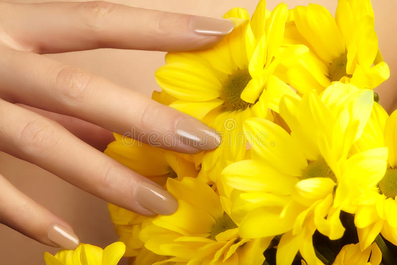 Clavos Manicured con el esmalte de uñas natural Manicura con nailpolish beige Manicura de la moda Laca brillante del gel Primaver foto de archivo