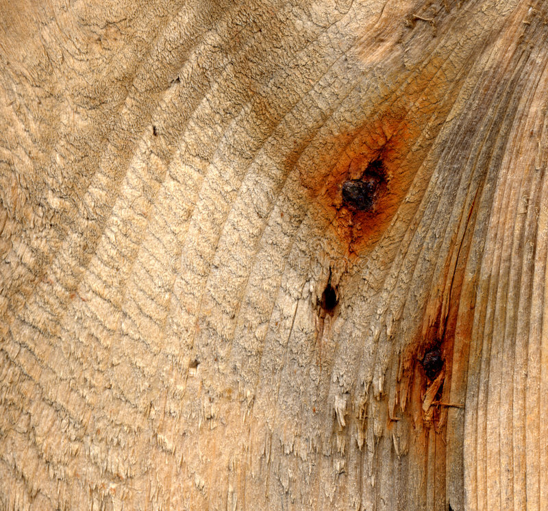Clavos oxidados en driftwood fotos de archivo libres de regalías