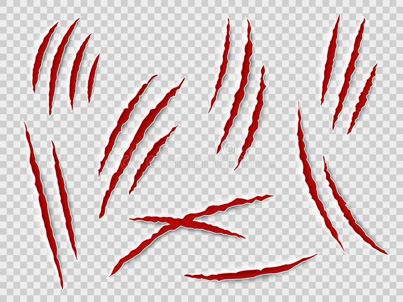 Claws scratches. Animal claw tracks, cat or tiger, bear or lion attack nails scratches. Thriller horror, halloween royalty free illustration