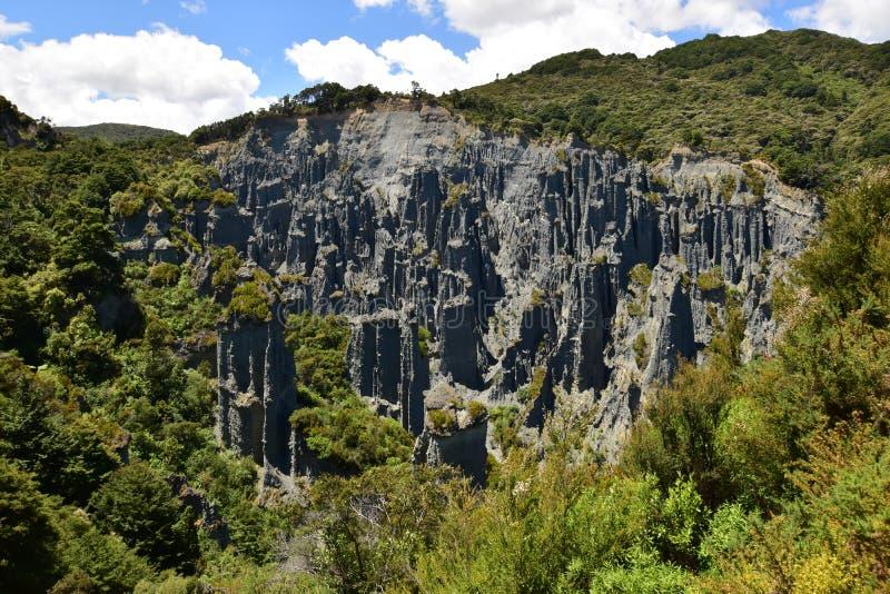 A clay cliff rocks in desert landscape in Cape Palliser New Zealand stock photos