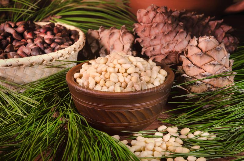 Clay cup full of shelled cedar nuts on the background of cedar cones and branches stock image