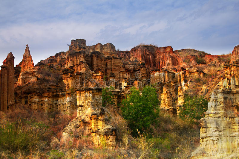 Download Clay forest stock photo. Image of landscapes, crack, area - 13577222
