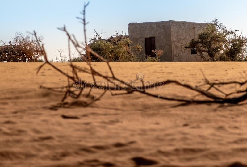 Clay hut in the Sahara desert in Sudan with a parched branch on the dry sand in the foreground, Africa royalty free stock images