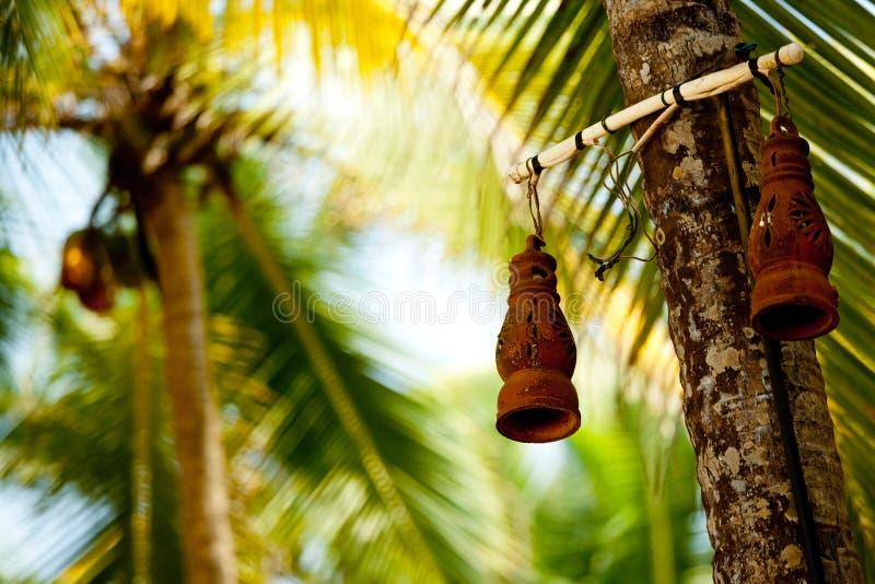 Clay lamp and palm tree. Kerala India stock photos