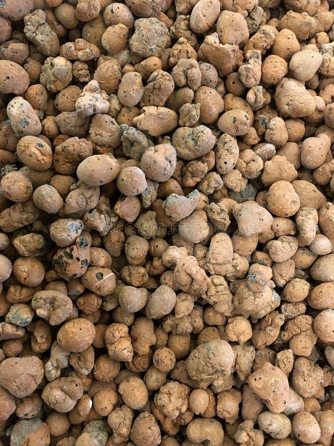 Clay pebbles - Leca stock image