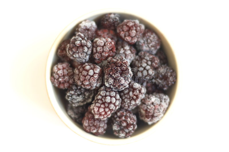 Clay plate with the frozen blackberry stock images