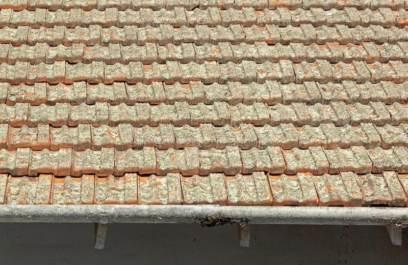 Download Clay Roof Tiles Covered I Lav Med Skalningsavloppsrännor Arkivfoto - Bild av yttersida, taklägga: 76704142