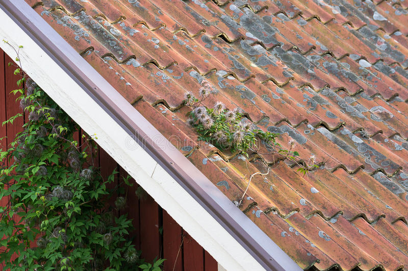 Clay tiles on roof top neding maintenance. Replacement or cleaning stock images