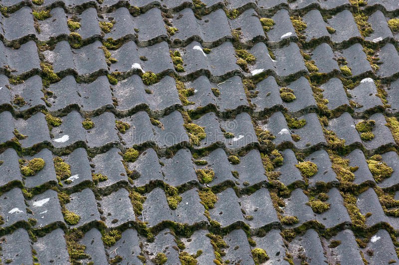 Black clay tiles with moss on roof top neding maintenance. Black Clay tiles with green moss on roof top neding maintenance, replacement or cleaning royalty free stock photography