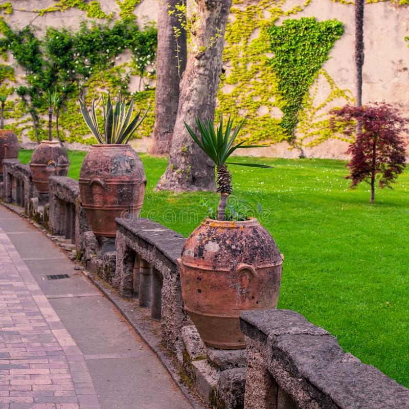 Clay vase with flowers in the cozy square of the European city. royalty free stock photos
