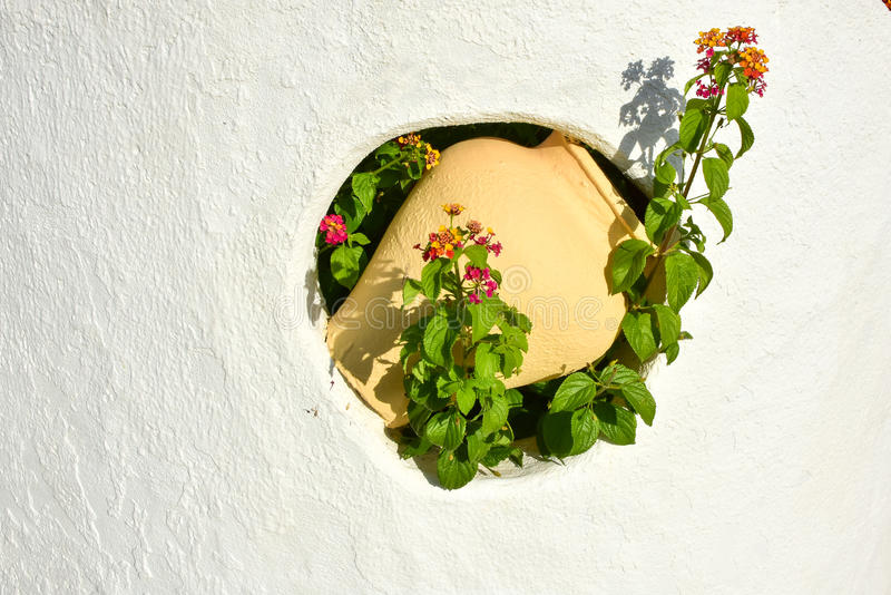 Clay Water Pot Wall Decoration With Flower In Garden Wall Stock ...