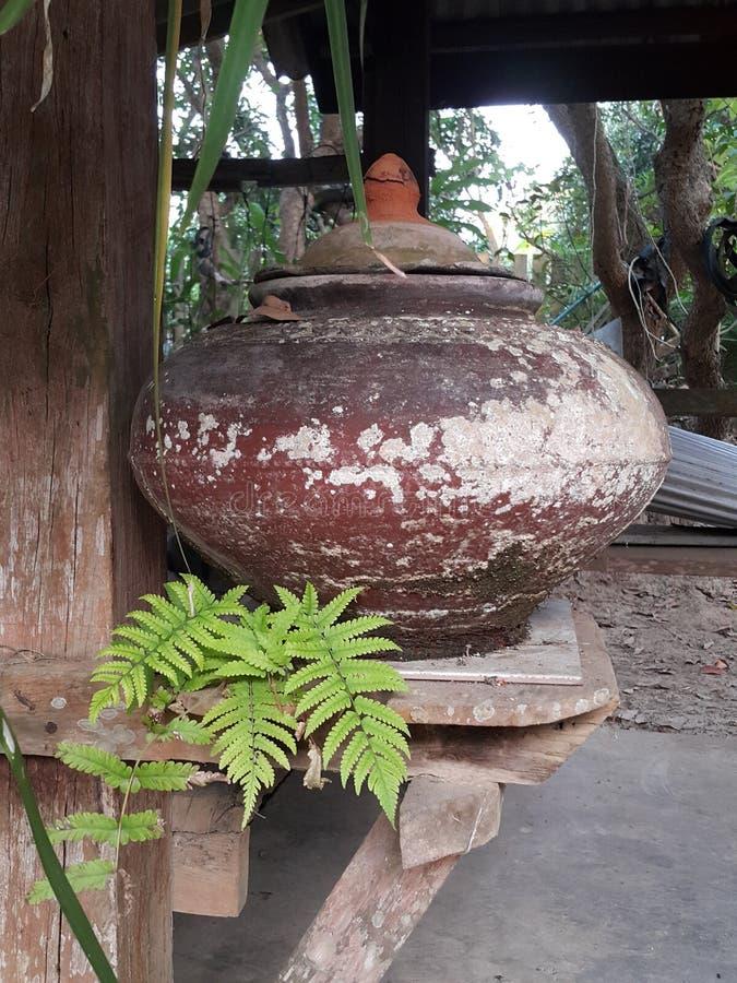 Claypot image libre de droits