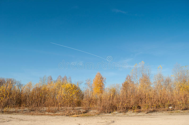 Download Clean autumn sky stock photo. Image of riverbed, forest - 24833128