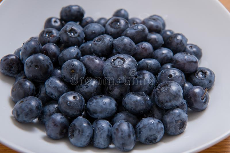 Clean freshly picked blueberries on white plate - close up studio shot.  Ingredients:  Antioxidants , Vitamin C, Antioxidant royalty free stock photo