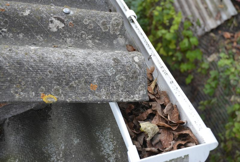 Clean gutters. Gutter Leaf Removal. Roof gutter with fallen leaves. Rain gutter cleaning photo. Clean gutters. Gutter Leaf Removal. Roof gutter with fallen stock image