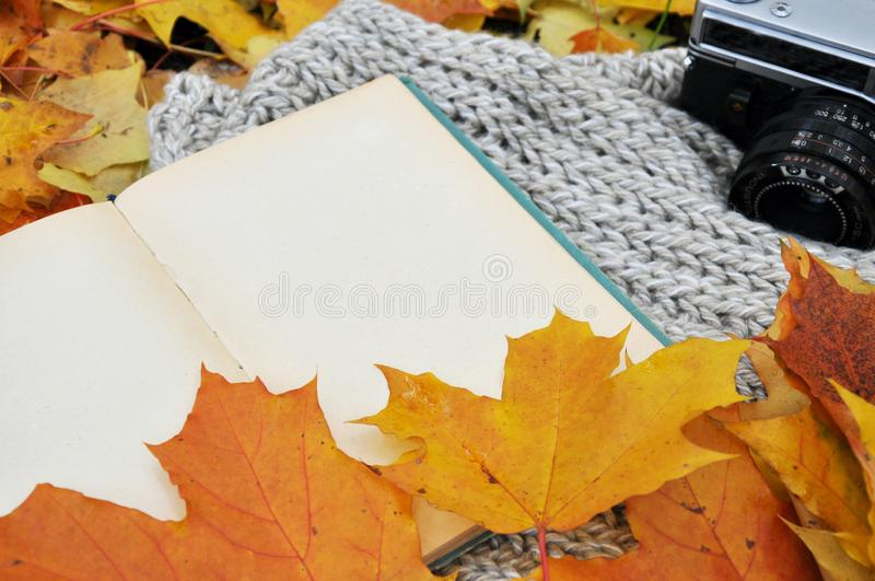 Clean old book with autumn leaves and old camera stock image